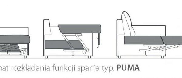 Schemat rozkłądania funkcji PUMA